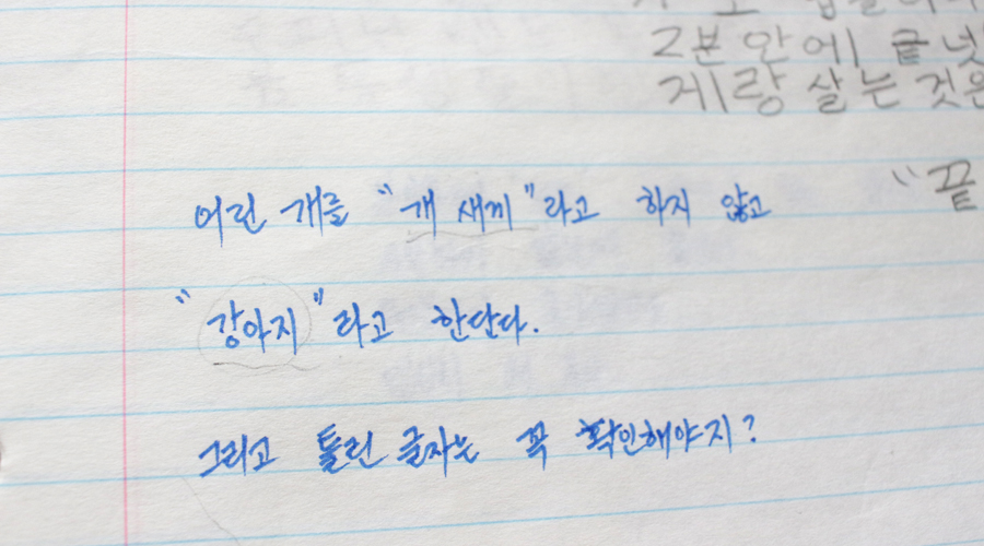 learning-korean-journal-4