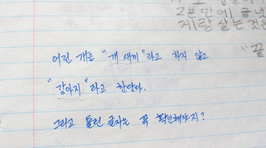 learning-korean-journal-4