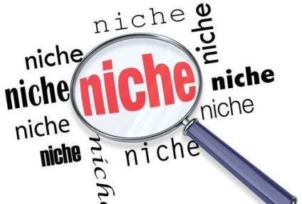 multi-niche-blog-to-single-niche-blog