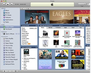 iTunes DRM FREE MUSIC: What does it mean? | |