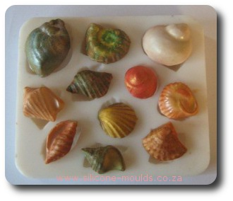 Shell Silicone Set 2