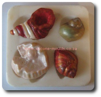Shell Silicone Set