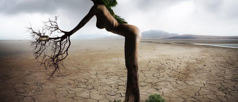 Woman female beautiful erotic sensual tree nature - wikimedia commons
