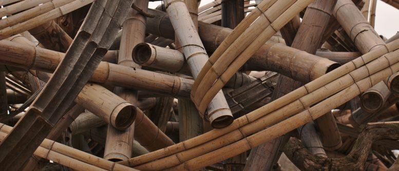 Bamboo Design
