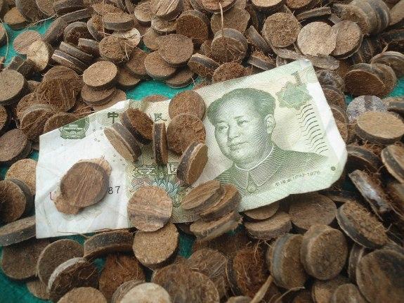 Coconut buttons in Dongjiao Town, Hainan, China