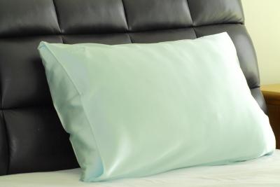 Mint Pillowcase NZ