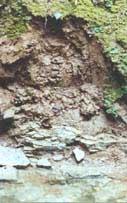 Lehm-Fundstelle