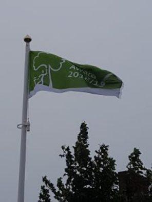 green flag flying