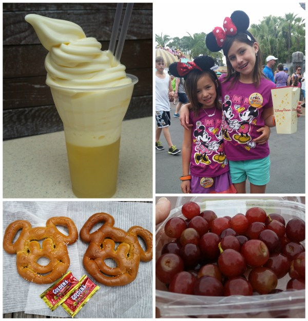 Disney World Treats