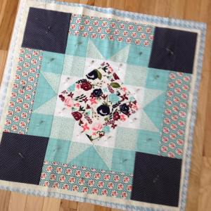 My finishitfriday post features this carinagardner rileyblakedesigns posygardenfabric star crazymomquiltshellip