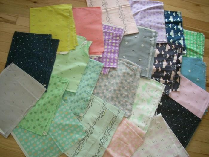 sandra clemonds believe fabric