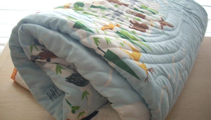 little explorer baby quilt