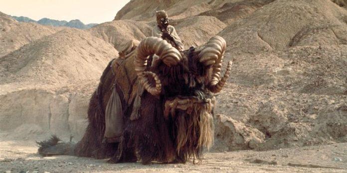 Star Wars Day Bantha