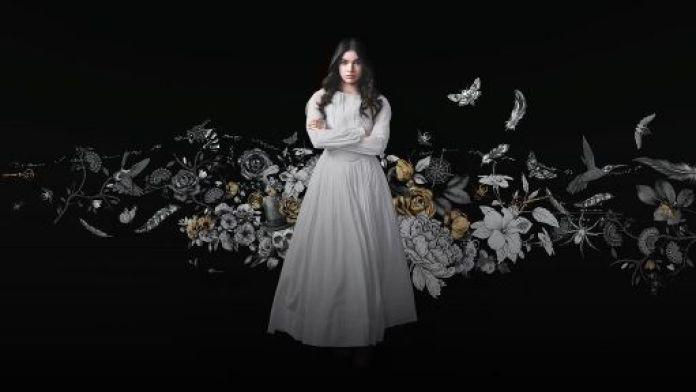 Dickinson serie TV trama