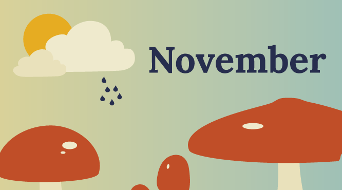calendar-downloadable-silocreativo-november-free