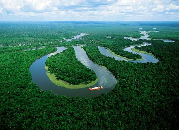 amazonas-verde