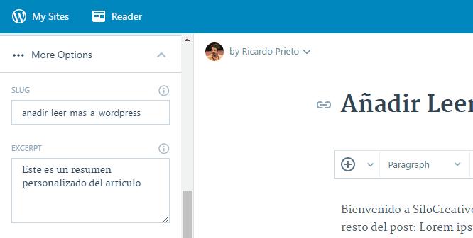Extractos personalizados en WordPress.com