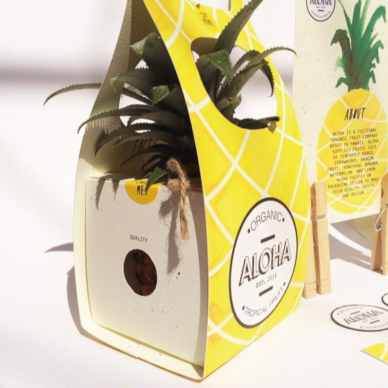 packaging-pinneaple-original-creativo