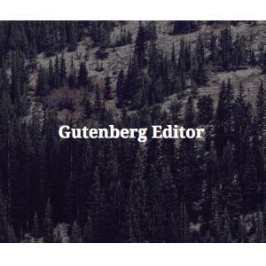 Nuevas novedades en Gutenberg para WordPress