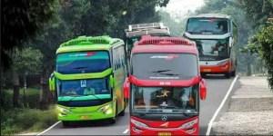 4 Alamat Tempat Sewa Bus Pariwisata di Medan