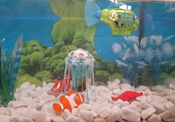 Das Robo - Aquarium