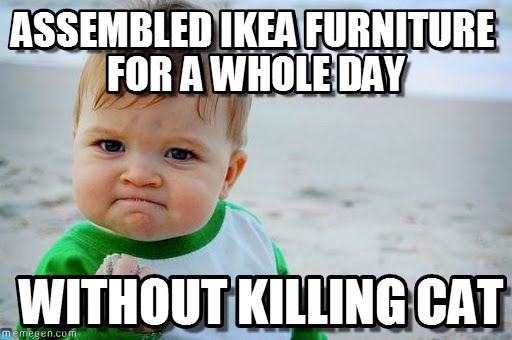 Assembled IKEA furniture for a whole day... without killing cat!