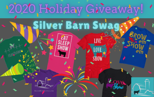 2020 Holiday Giveaway