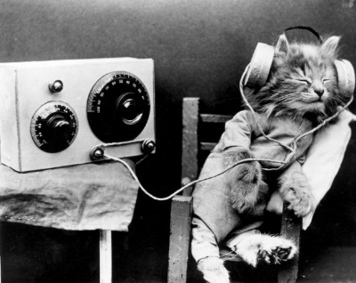 vintage-cat-headphones