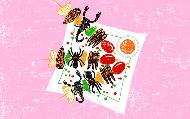 Bug Restaurants SilverKris