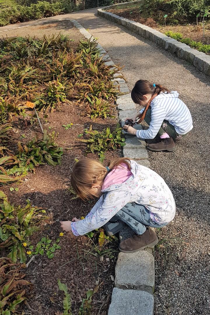 Wrocław z dziećmi ogród botaniczny wiosna