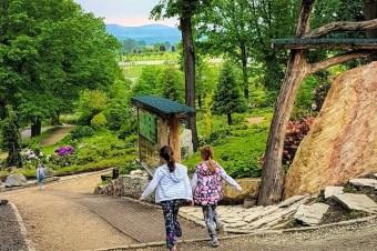 Wojsławice: rodzinny piknik w botanicznym raju