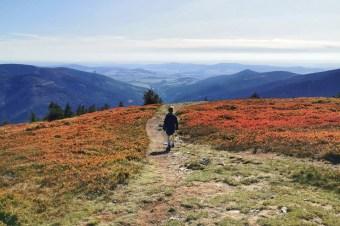 W góry z dziećmi: najpiękniejszy szlak na Śnieżnik i wyśmienite pstrągi