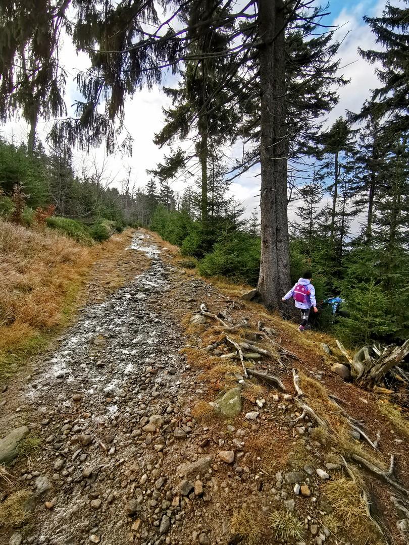 Góry Sowie z dziećmi jesień