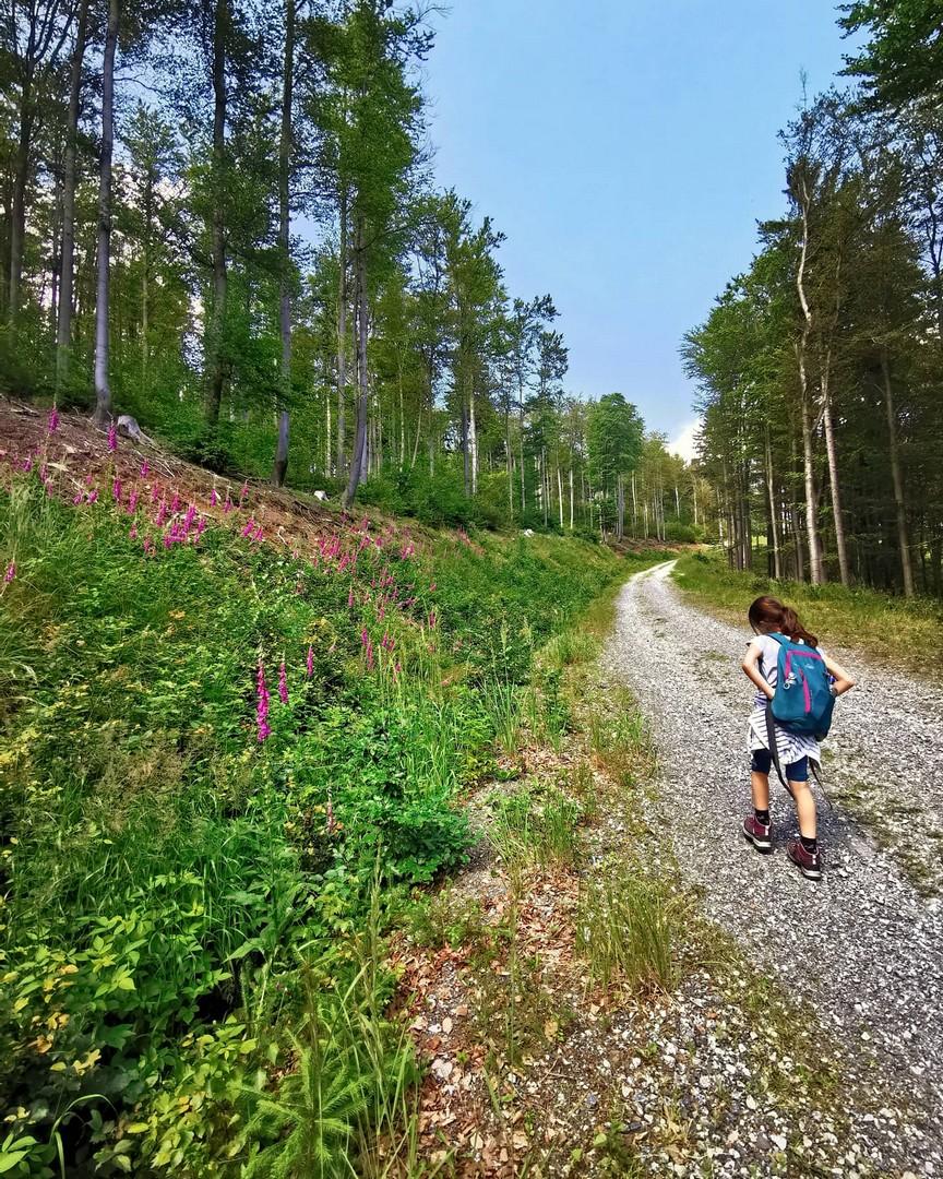 SilverMint blog Góry Bystrzyckie szlak na Jagodną