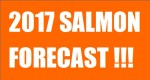 salmon forecast 2017, salmon outlook 2017, fraser river salmon run 2017,