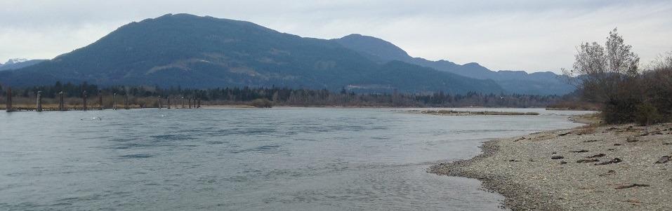 harrison river kanada, fischen kanada, lachs fischen british kolumbia, harrison river fischen, lachs fischen kanada, lachs fischen canada