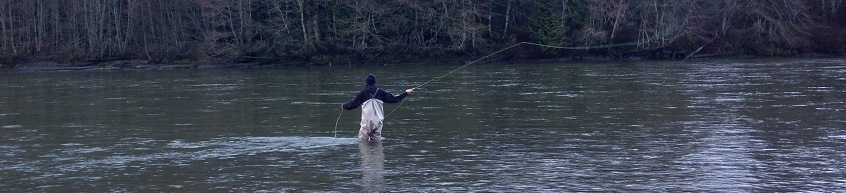 fly fishing lessons, fly fishing, vancouver fly fishing, river fly fishing