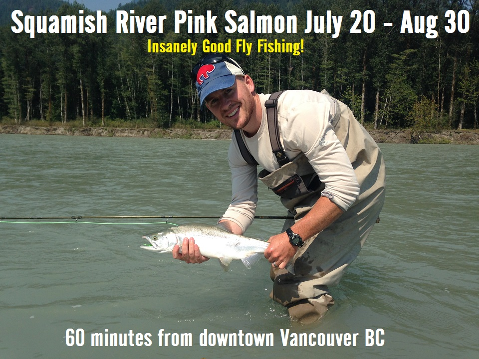 north vancouver fly fishing guide