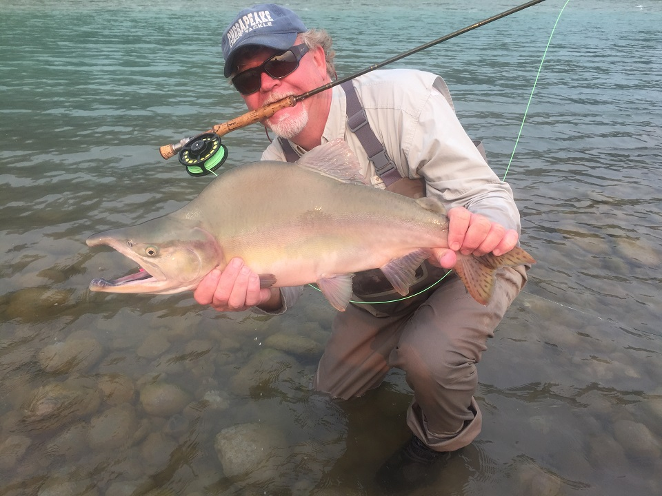 Vancouver guided fly fishing report aug 17 2017 for Salmon fishing vancouver