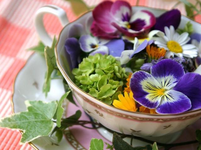 Risultati immagini per fiori eduli