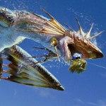 Trucos y consejos de Monster Hunter 3 Ultimate: conseguir dinero