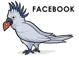 Facebook: Un poco molesto, y requiere cuidados que ocupan mucho más tiempo del que nos gustaría dedicarle.