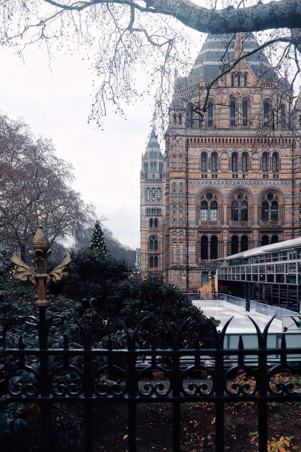 Londra per famiglie: il Museo di Storia Naturale e le graziose Mews