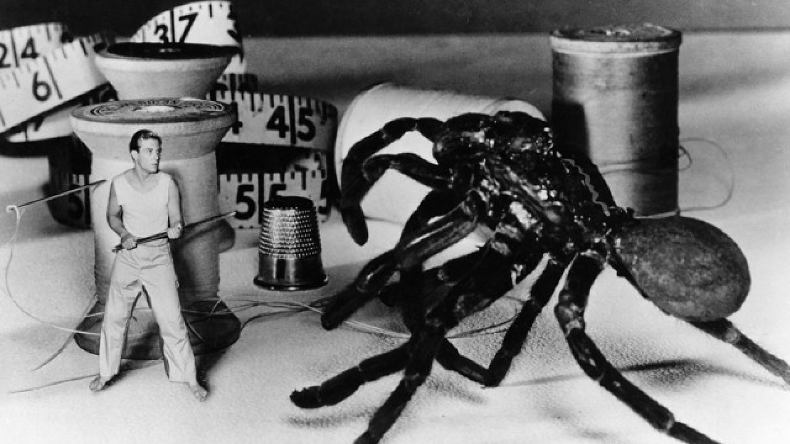 Image result for the incredible shrinking man