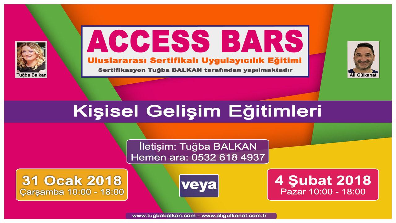 ACCESS BARS Uygulayıcılık Eğitimi – İSTANBUL – 31 Ocak veya 4 Şubat 2018