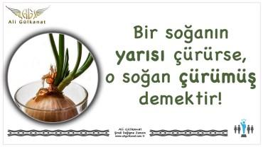 Bir Soğanın Yarısı Çürürse…