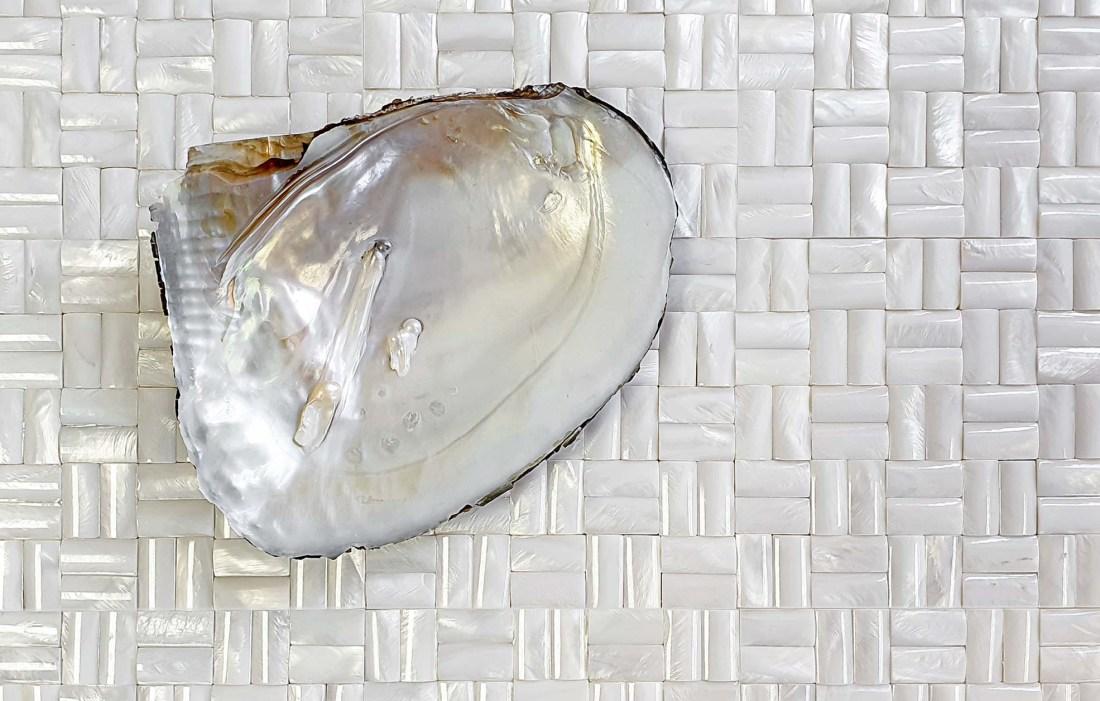 Bianco shell