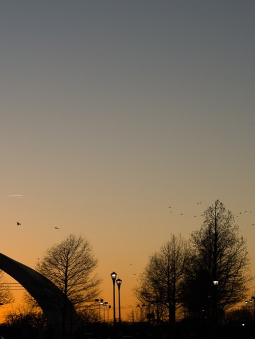 mueller hangar silhouette in sunset