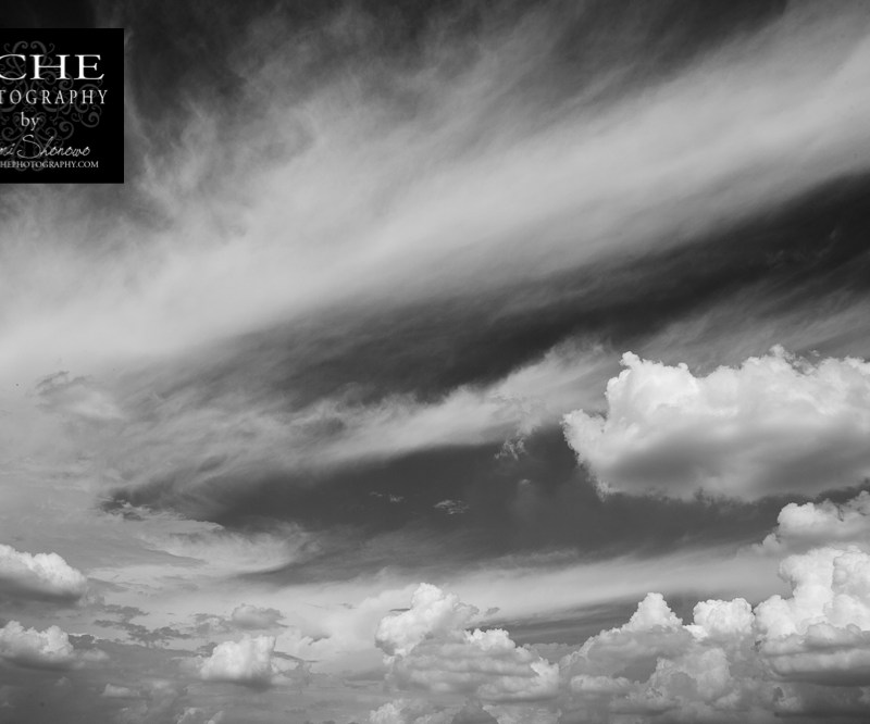 {day 253 project365 2015… swooshy cloud}