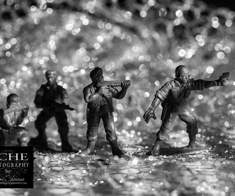 {day 151 project365 2016… memorial day army men}